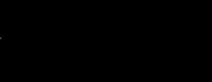 Logo InsaneBootcamp